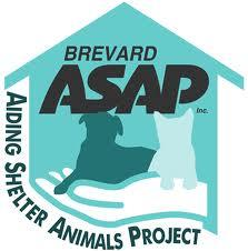 Brevard Adding Shelter Animals Project