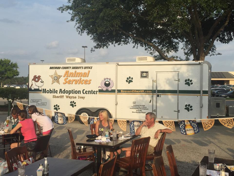 Mobile Adoption Center